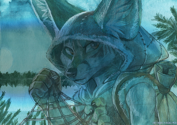 Шаман Фурри, Furry Art, Koul Fardreamer, Furry Fox