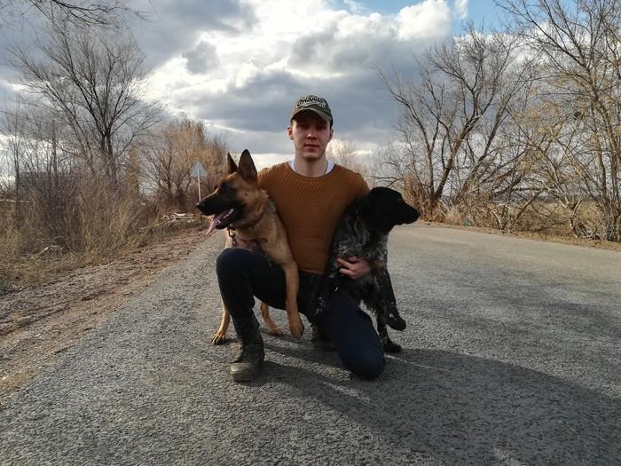 Помогли приюту для собак. Лига чистомена, Приют для животных, Животные, Помощь животным, Собака