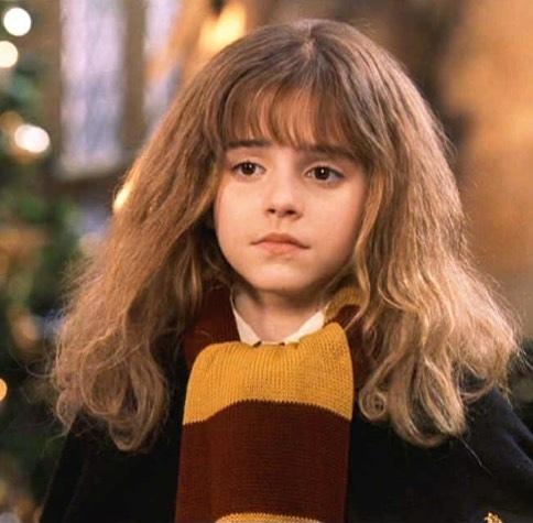 10 причин, по которым Гермиона могла быть исключена из Хогвартса (или даже попасть в Азкабан) Гарри Поттер, Гермиона, Хогвартс, Азкабан, Топ, Длиннопост