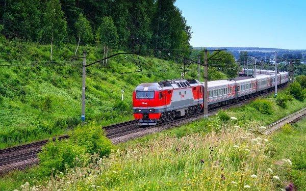 В поезде в трусах Поезд, Юмор, Реальная история из жизни
