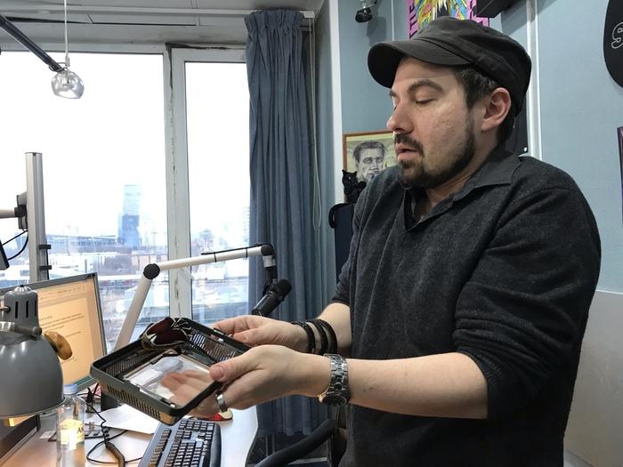 Нападение гигантского жука на ведущего радио MAXIMUM! Жуки, Змея, Питон, Ржака, Смешное, Неожиданно, Внезапно, Радио, Видео, Длиннопост
