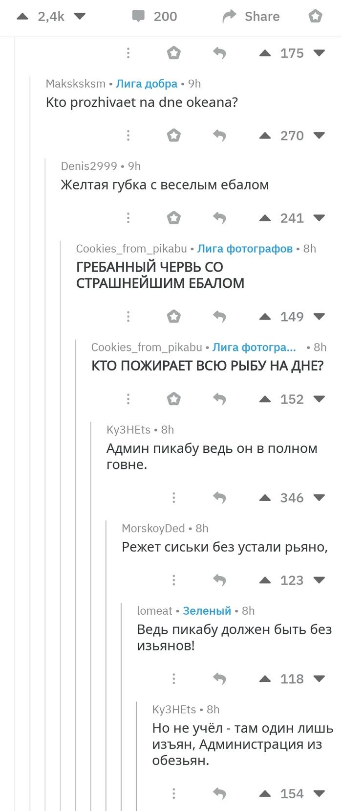 Тем временем на Реддите Скриншот, Reddit, Длиннопост