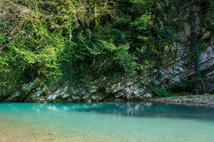 Большой Сочи, Тисо-Самшитовая роща Сочи, Природа, Голубая лагуна, Скалы, Колхидский лес