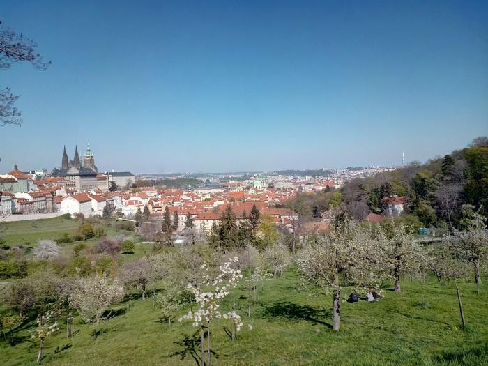 Чешская весна Природа, Прага, Весна, Сады