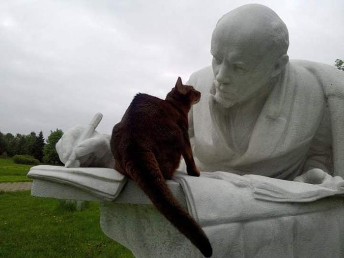 Ленин и котик