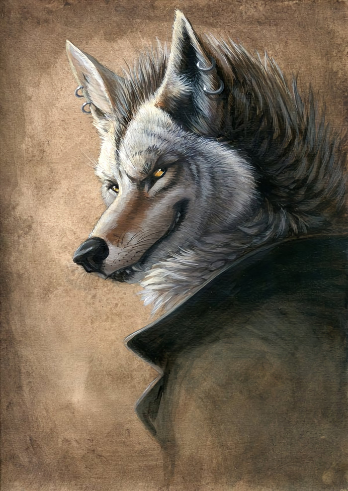 Not To Be Trusted Фурри, Furry Art, Furry Canine, Койот, Coyote, Пирсинг, Hibbary