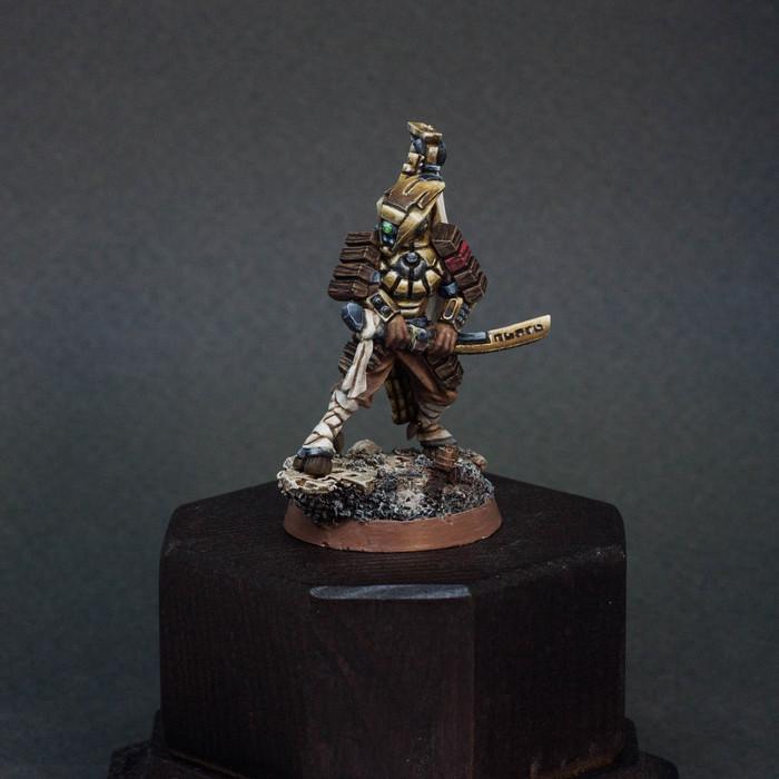 Veteran Okatn(пофиксил) Warhammer 40k, Wargaming, Painted miniatures, Хобби, Длиннопост