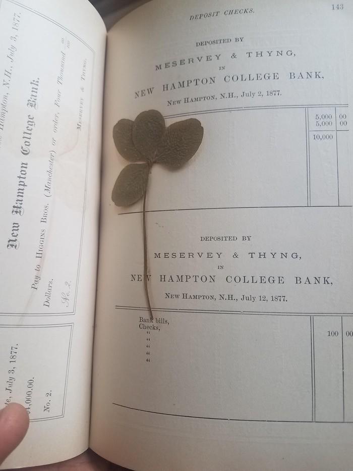 4х листный клевер в книге 1877 года
