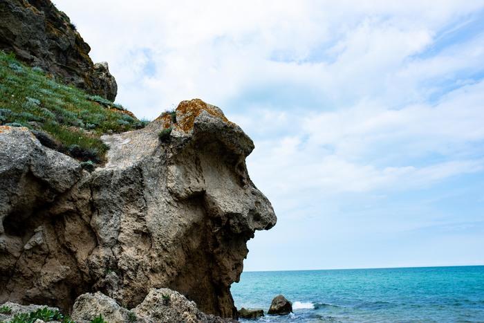 Живые скалы