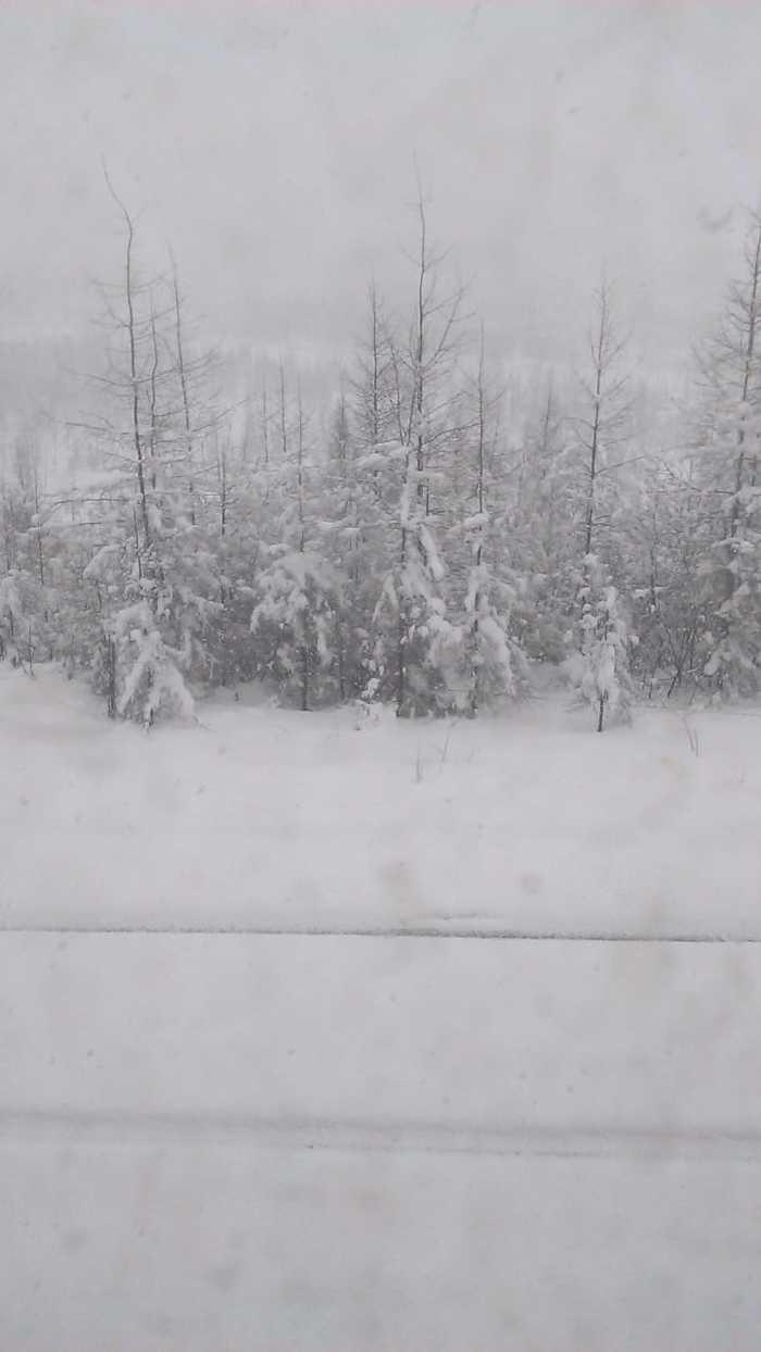 Вот такое хреновое лето :) Погода, Снег, Лето