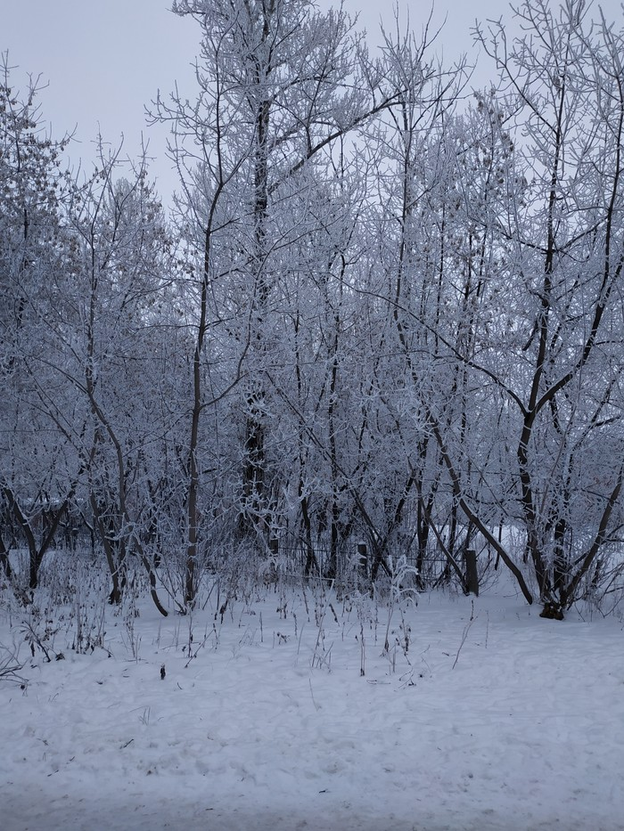 Зимняя картинка Зима, Красота природы