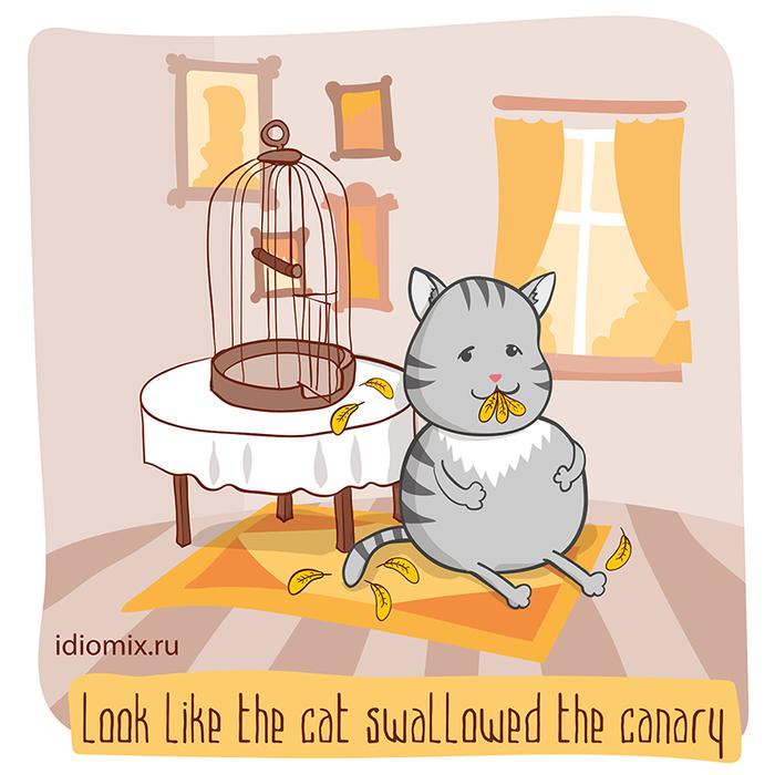 Лисички, котики, и английские идиомы Лисички против котиков, Английский язык, Картинки, Идиомы, Длиннопост