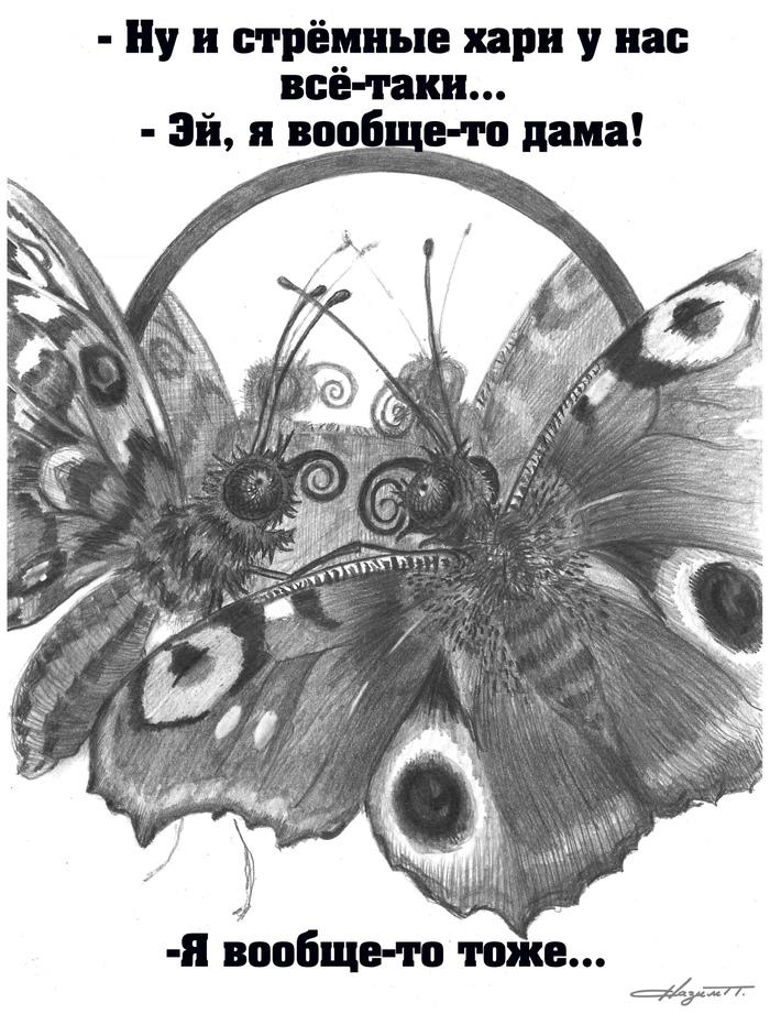 Лица бабочек лучше не разглядывать