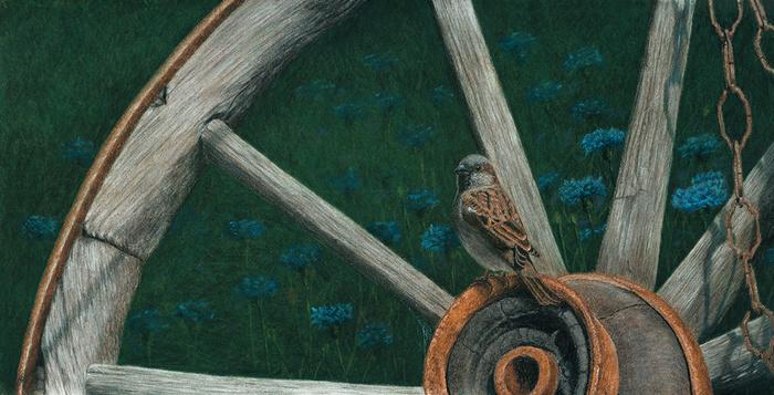 Домовый воробей Рисунок, Пастель, Воробей, Птицы, Реализм, Арт
