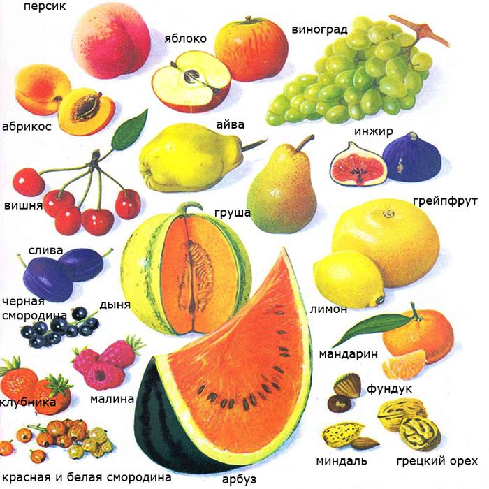 Фрукт или овощ? Фрукты, Овощи, Ботаника, Заблуждение, Длиннопост