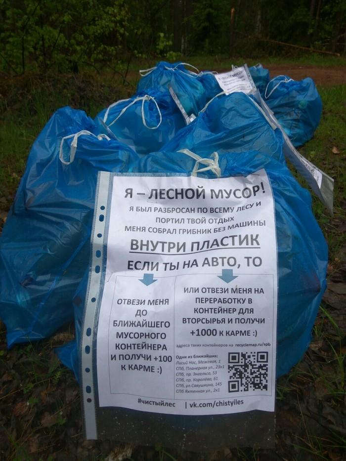 Собрал 32 мешка мусора в свой 32-й день рождения Чистый лес, Охрана природы, Чистомен, Мусор, Уборка