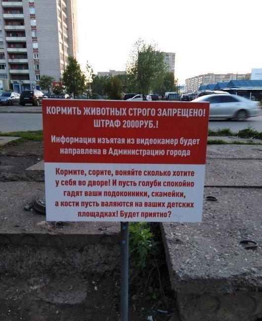 Фотофакт: запрещающая подкармливать животных табличка появилась в Ижевске Животные, Ижевск, Кормление