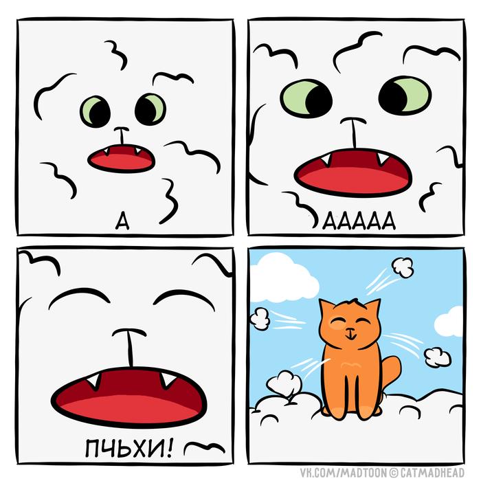 Тополиный пух, жара и ъуъ... Пух, Кот, Июнь, Котомафия, Комиксы, Веб-Комикс