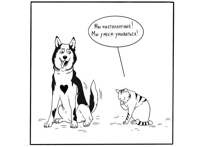 Отличия кошек и собак #1 Комиксы, Веб-Комикс, Собака, Кот, Рисунок, Длиннопост