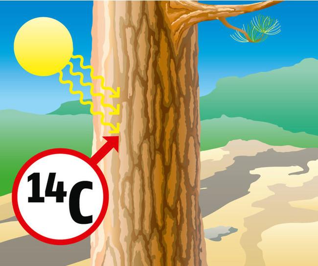 Хочу все знать #285.Как это работает: радиоуглеродный анализ возраста археологических находок. Хочу все знать, Наука, Химия, Углерод, Анализ, Возраст, Изотоп, Интересное, Видео, Длиннопост