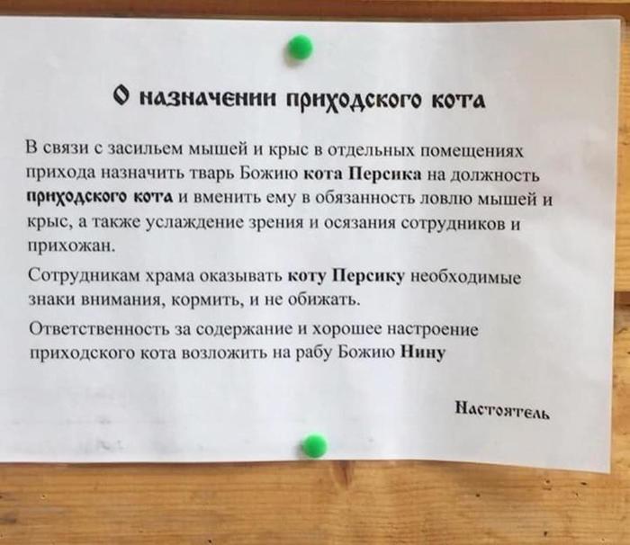 https://cs13.pikabu.ru/post_img/2019/07/18/5/156343133317774354.jpg