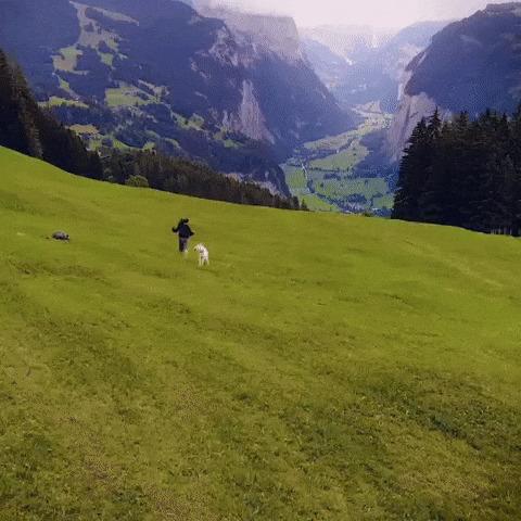 У подножья швейцарских Альп
