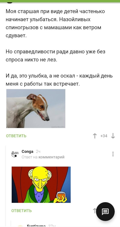 Порно Ролики Старики Лижут У Девочек