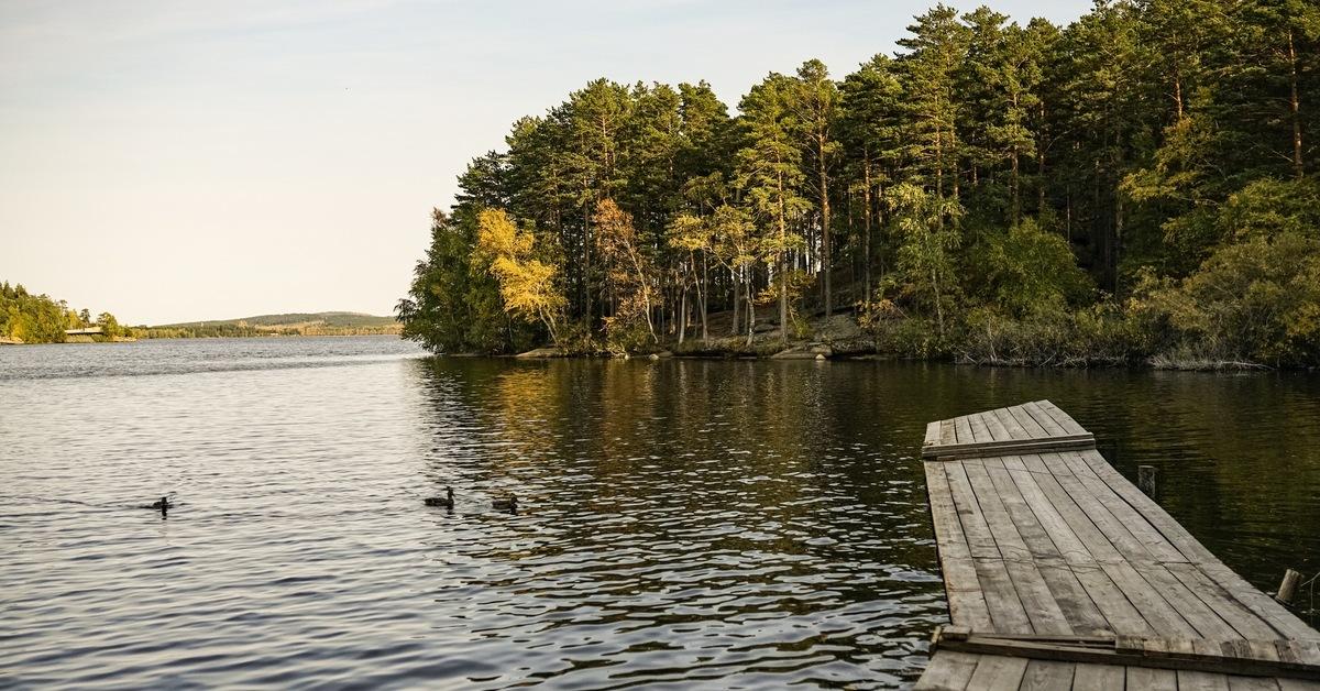 боровое озеро ногинский район фото эмблем, знаков отличия