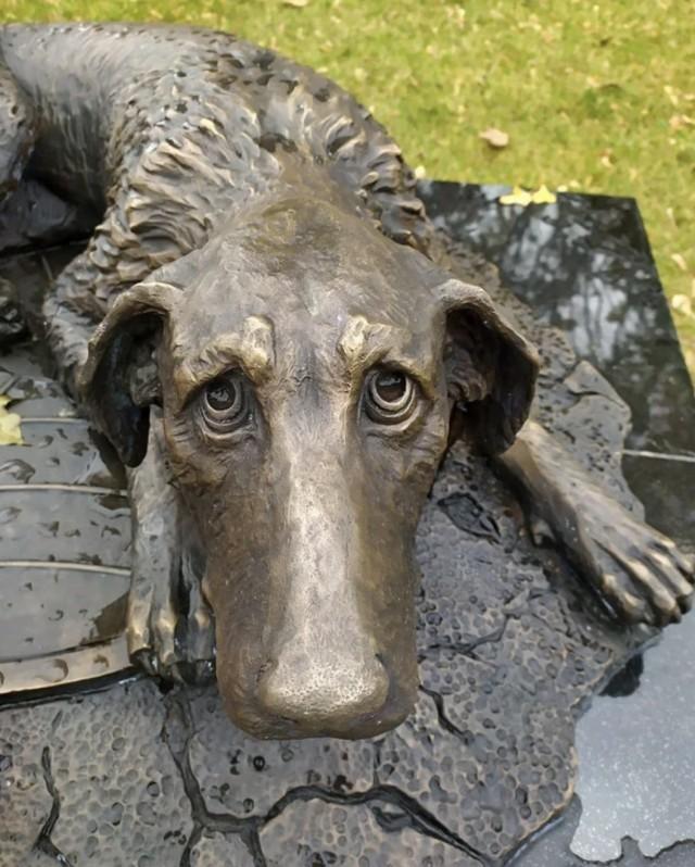 памятник волонтерам по защите бездомных животных