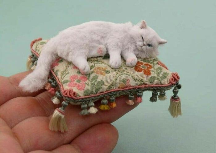 Миниатюрные котики в работахKerri Pajutee Длиннопост, Кот, Фотография, Миниатюра