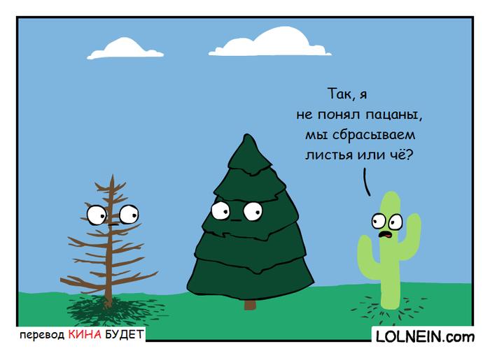 "Про ""листья""... Ёлки, Кактус, Листья, Комиксы, Перевел сам, Lolnein"