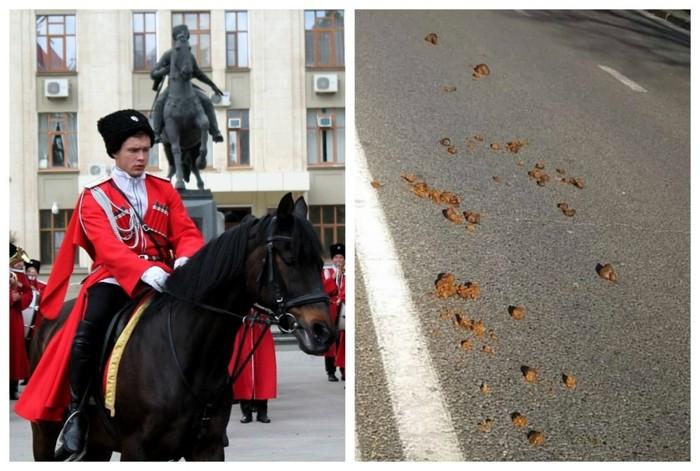 Они считают себя выше остальных: навоз лошадей казаков надоел краснодарцам Краснодар, Казаки, Лошади, Общество