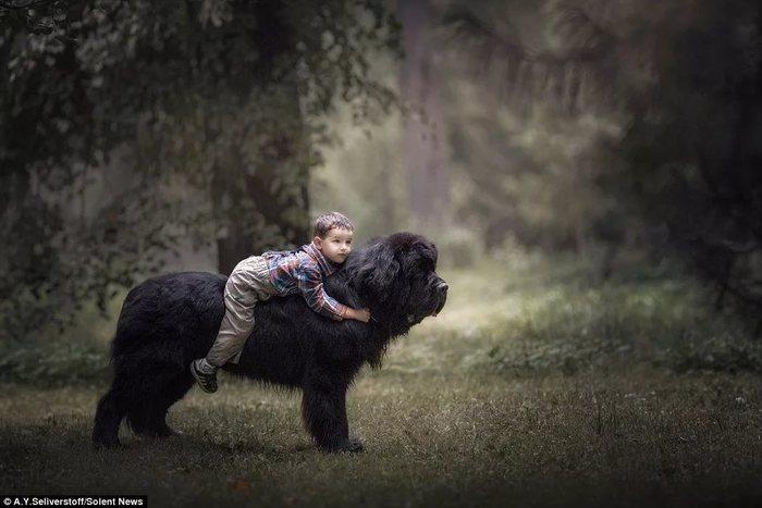Лучший друг Собака, Ньюфаундленд, Дети, Дружба