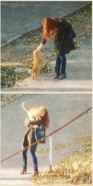 Забери меня отсюда Кот, Домашние животные, Длиннопост