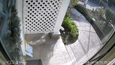 Кто то спёр мою посылку, начал смотреть по камерам