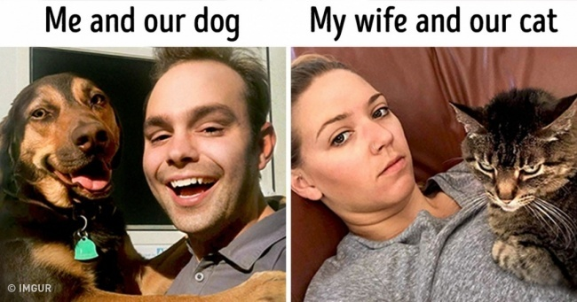 Я и моя собака. Моя жена и ее кот