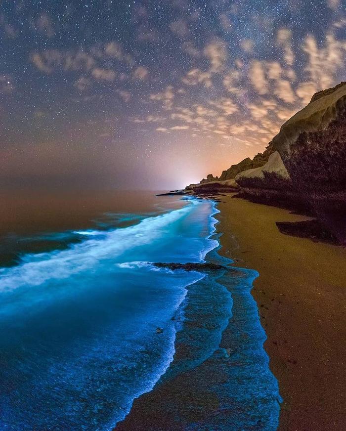 Биолюминесцентный планктон в персидском заливе
