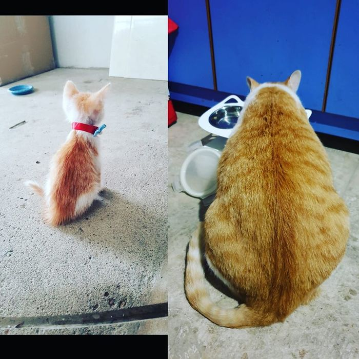Почувствуйте разницу
