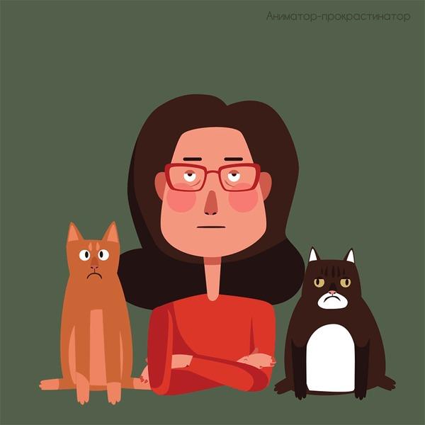 Как я верила, что я - собачница, но стала кошатницей Кот, Бездомные животные, Домашние животные, Приют, Длиннопост, Комиксы, Юмор, Видео, Анимация, Иллюстрации, Гифка