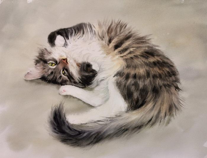 Что понял, длительно мурлыча,Сибирский кот? Акварель