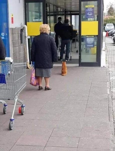 С супермаркете, на кассе