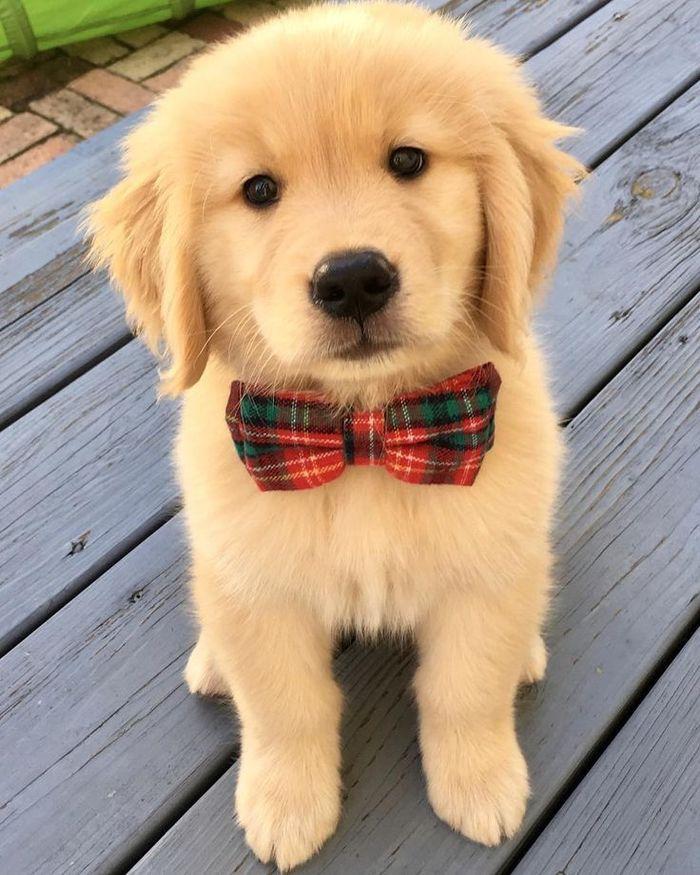Хороший мальчик желает познакомиться