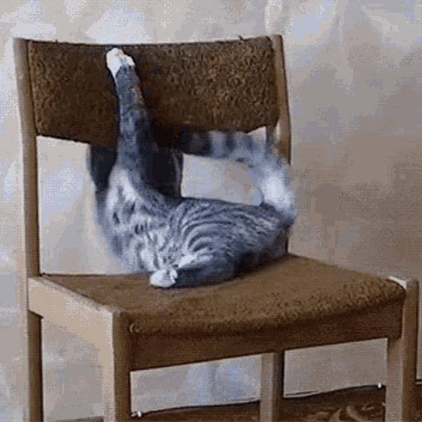 Что за хрень этот ваш стул