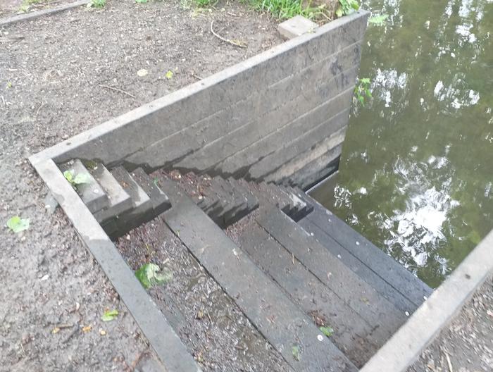 На лестнице, которая ведёт к реке, есть ещё одна маленькая лесенка для уток, чтобы они могли выходить и заходить в воду