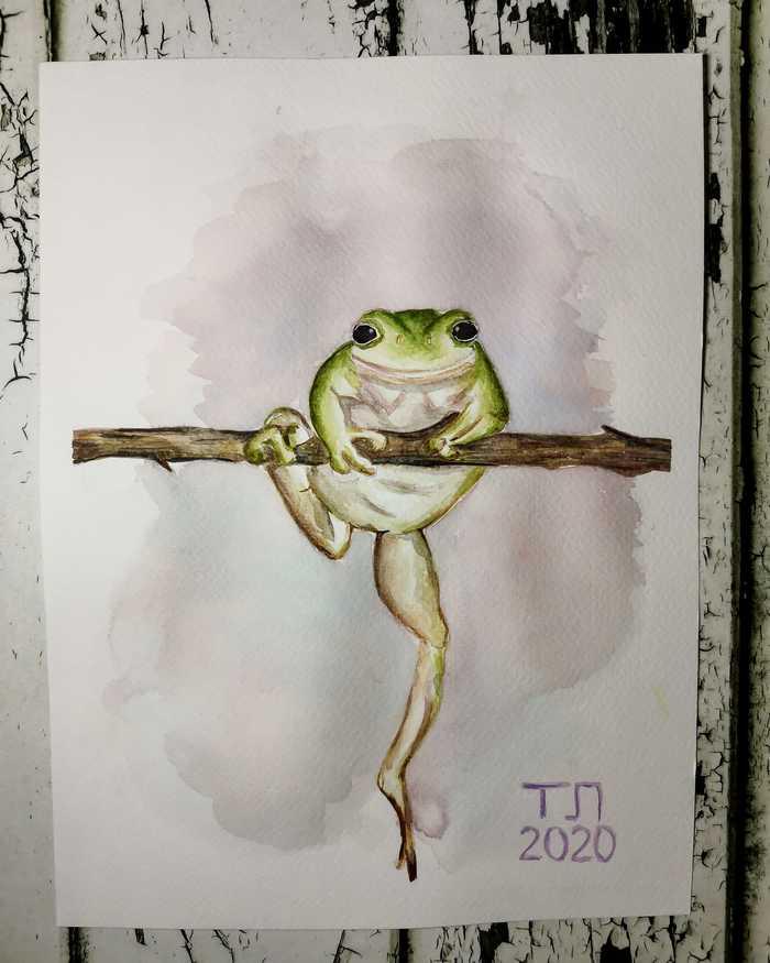 Лягушка-квакушка акврелью