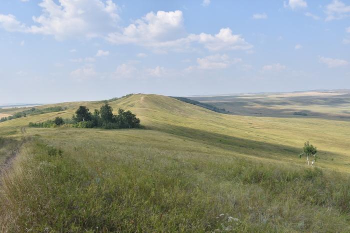 природа тюльганского района фото