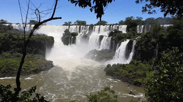 Водопады Игуасу (2018 год) Водопад, Водопады Игуасу, Носуха, Южная Америка, Аргентина, Заповедник, Природа, Гифка, Видео, Длиннопост