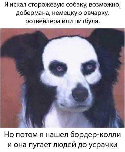 Оно))