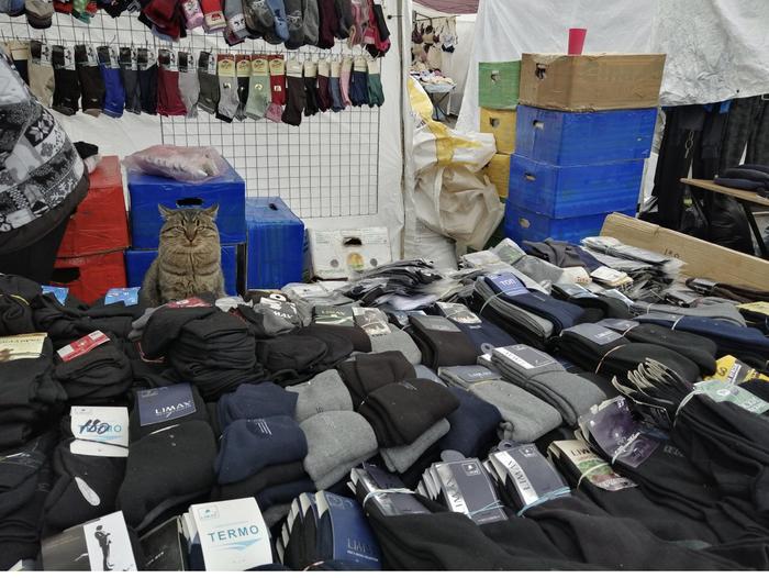 Покупаем носочки, не проходим мимо