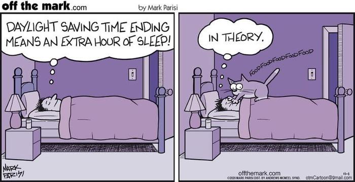 Переход на зимнее время означает дополнительный час сна.... В теории